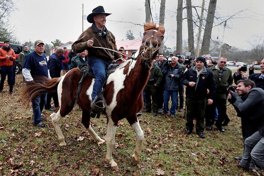 moore-horse