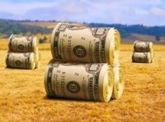 farm subsidies.jpg
